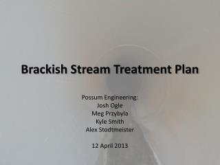 Brackish Stream Treatment Plan