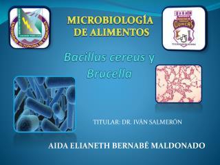Bacillus  cereus y B rucella
