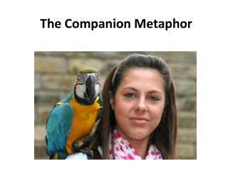 The  Companion Metaphor
