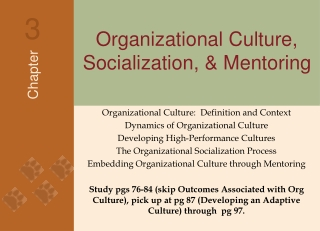 The Interaction between Organisational Culture and National Culture