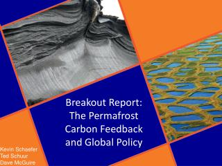 Breakout Report :  The Permafrost Carbon Feedback and Global  Policy