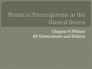 Political Participation in the United States