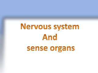 Nervous system And  sense organs