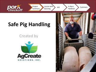 Safe Pig Handling