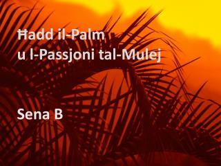 Ħadd il-Palm  u  l-Passjoni tal-Mulej Sena B