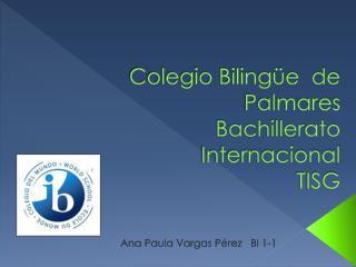 Colegio Bilingüe  de Palmares Bachillerato Internacional TISG