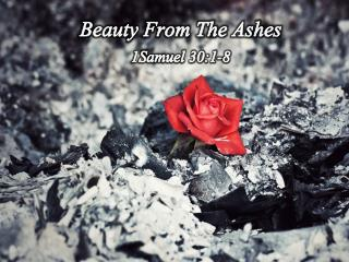Beauty From The Ashes 1Samuel 30:1-8