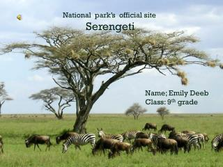 National  park's  official site  Serengeti