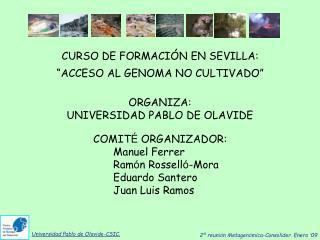 Universidad Pablo de Olavide-CSIC.