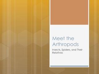 Meet the Arthropods