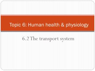 6.2  The transport system