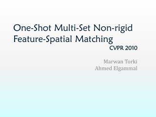 One-Shot Multi-Set Non-rigid Feature-Spatial Matching
