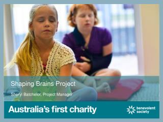 Shaping Brains Project
