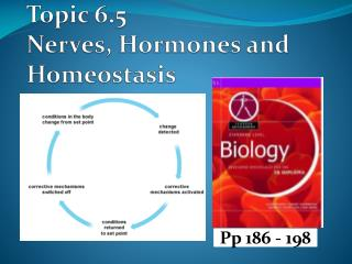 Topic 6.5 Nerves, Hormones and Homeostasis