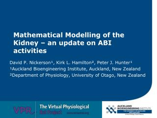 Mathematical Modelling of the Kidney – an update on ABI activities