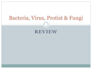 Bacteria, Virus, Protist & Fungi