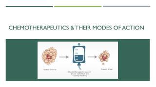 Chemotherapeutics & Their Modes of Action