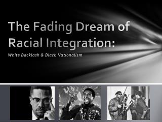 The Fading Dream of Racial Integration: