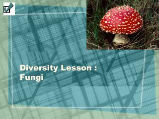 Diversity Lesson :  Fungi