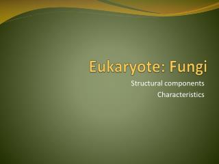 Eukaryote: Fungi