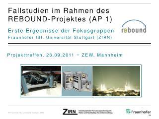 Fallstudien im Rahmen des REBOUND-Projektes  (AP 1)