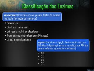 Classifica��o das Enzimas