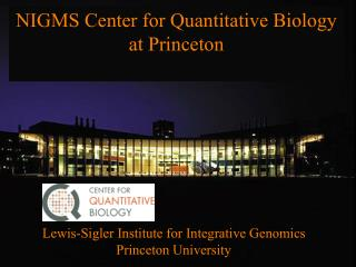 NIGMS Center for Quantitative Biology at Princeton
