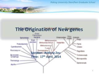 The Origination of New genes