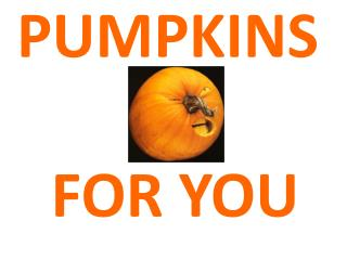 PUMPKINS  FOR YOU