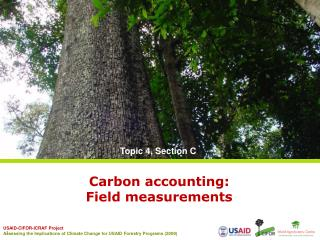 Carbon accounting:  Field  measurements