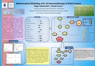 Mathematical Modeling of IL-12 Immunotherapy  of Solid Cancers