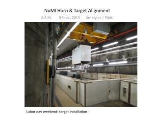 NuMI Horn & Target  Alignment