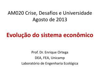 AM020 Crise, Desafios e Universidade Agosto de 2013 Evolução  do sistema econômico