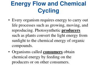 Energy Flow and Chemical Cycling