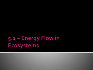 5.1 � Energy Flow in Ecosystems