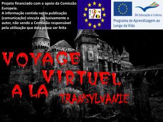 Projeto financiado com o apoio da Comissão Europeia.