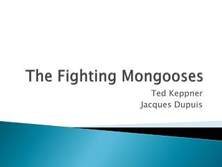 The Fighting Mongooses
