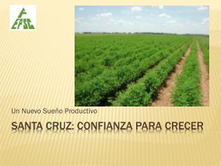 Santa Cruz: Confianza para Crecer
