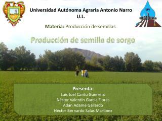 Universidad Aut�noma Agraria Antonio Narro U.L.