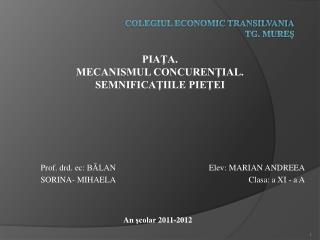 COLEGIUL ECONOMIC TRANSILVANIA TG. MUREŞ