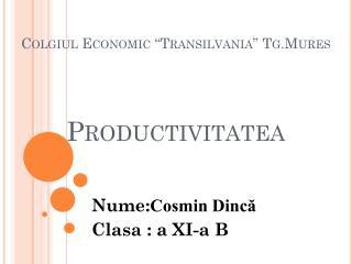 """Colgiul  Economic """" Transilvania """"  Tg.Mures Productivitatea"""