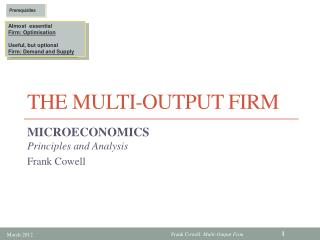 The Multi-Output Firm