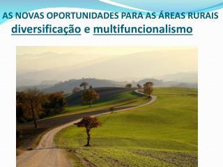AS  NOVAS OPORTUNIDADES PARA  AS  ÁREAS  RURAIS diversificação  e  multifuncionalismo