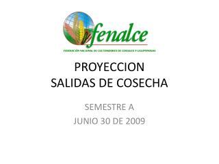 PROYECCION  SALIDAS DE COSECHA