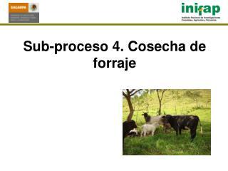 Sub-proceso 4. Cosecha de  forraje