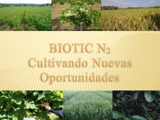 BIOTIC N 2 Cult ivando Nuevas Oportunidades