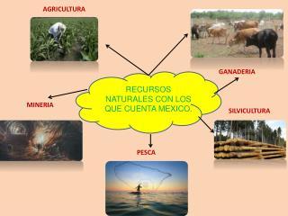 RECURSOS NATURALES CON LOS QUE CUENTA MEXICO.
