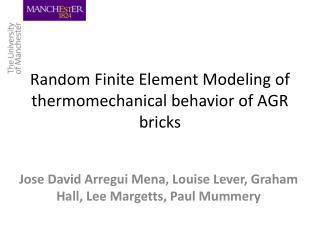 Random Finite Element Modeling of  thermomechanical  behavior of AGR bricks