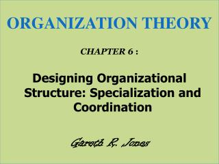 ORGANIZATION THEORY CHAPTER  6  :