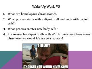 Wake Up Work #3